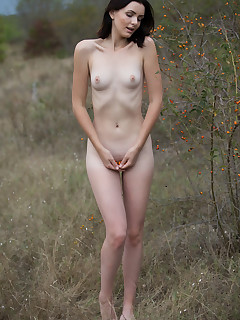 Small breasted naked girls pics