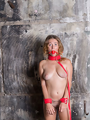 Newcomer Noel is gagged and tied up baring her yummy body.