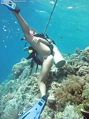Diving beauty strips underwater
